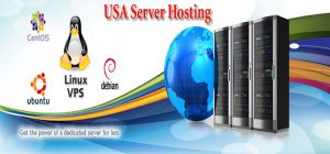 USA Server Hosting