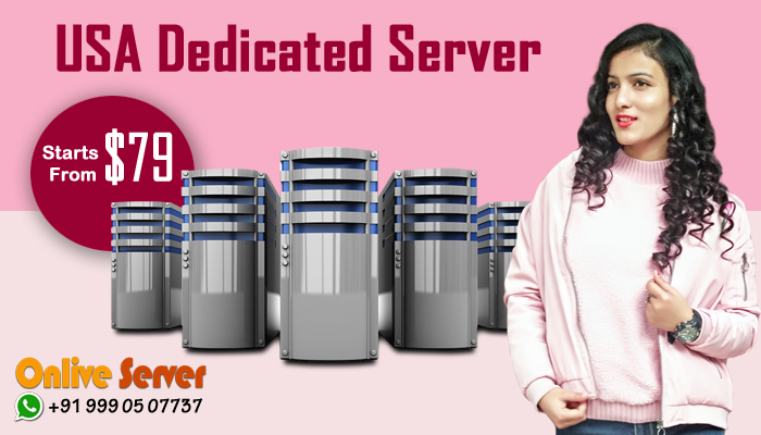 Pick Our USA Dedicated Hosting Services to Escalate Your Business Growth
